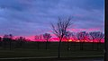 December Sunset over Sycamore Park - panoramio.jpg