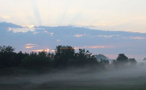 Crepuscular rays. Meadow at dawn