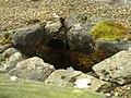 Detail from roman fort of Vindolanda 10.jpg
