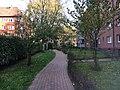 Dieselgarten.jpg
