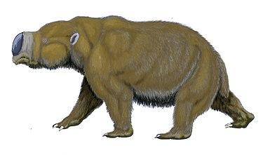 Diprotodon, un género de mamíferos australianos todos extintos, del tamaño de los rinocerontes.