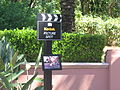 Disney MGM Studios Photo Spot.jpg