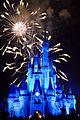 Disneyworld fireworks - 0215.jpg