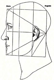 Particolare della Divina Proportione di Luca Pacioli (1509), che rappresenta la struttura del viso con una rappresentazione della Sezione aurea