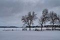 Docks along frozen Madison Lake in winter, Minnesota (39795719275).jpg