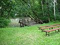 Dom pomocy społecznej w Zielonce - ogród.JPG