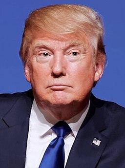 Donald Trump crop 2015