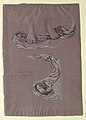 """Drawing, Study of Drapery """"Fortune"""", ca. 1877 (CH 18404527).jpg"""