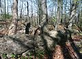 Dreienburg friedewald mauerreste.jpg