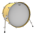 Drumhead Coated on Bass Drum.png