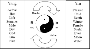 Duality (CoPs) - Image: Duality (Co P)