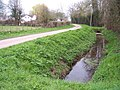 Ducks in a Ditch, Sutton Rhea - geograph.org.uk - 152421.jpg