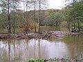 Duffryn Pond, Neath - geograph.org.uk - 292059.jpg