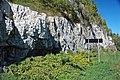 Dunham Dolomite (Lower Cambrian; Route 2 roadcut, southeast of the Lamoille River bridge, Vermont, USA) 2.jpg