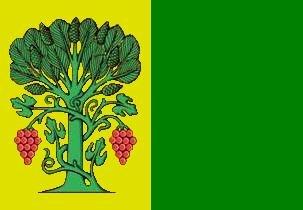 Bandeira de A Pobra do Brollón