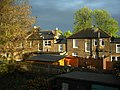 East London backyard.jpg