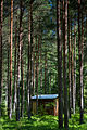 Ekopark eremitkoja2 (11794691763).jpg