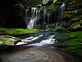 Elakala Waterfalls pub5 - West Virginia - ForestWander.jpg