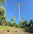 Electricity pole along the Jubilee Walk - geograph.org.uk - 1936428.jpg