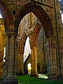 Encased in Gold, Tintern Abbey - geograph.org.uk - 337135.jpg