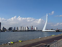 Erasmusbrug - Rotterdam - View of the bridge from the soutwest