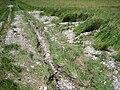 Erosion Off-site Wege004.jpg