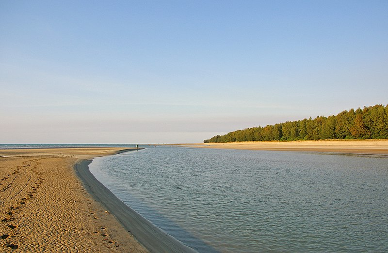 Estuary mouth.jpg