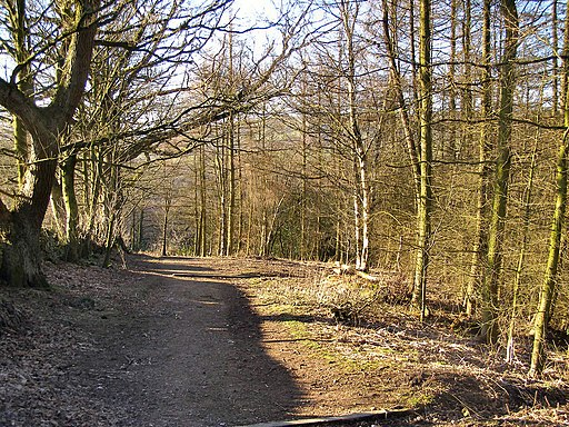 Etherow Country Park - geograph.org.uk - 1690116