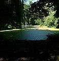 Eutrophierter Weiher im Stadtpark - panoramio.jpg