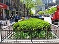 Evanston (154148755).jpg