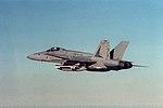 F-18A Hornet VMFA-451 1989.jpeg