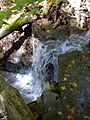 FLT CH1 1.4 mi - Waterfall at trail Register - panoramio.jpg