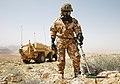 Falcon Sqn FUCHS vehicle in Jordan MOD 45164575.jpg