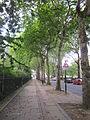 Falkner Square, Liverpool (15).JPG