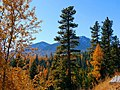 Fall Colors in the Elkhorns, Wallowa-Whitman National Forest (26195908604).jpg
