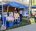 Falun Dafa at Freedom Festival (43837934892).jpg