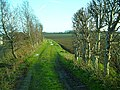 Farm track beside the railway - geograph.org.uk - 302862.jpg