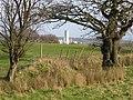 Farmland and field boundary near Stryt-cae-rhedyn - geograph.org.uk - 314958.jpg