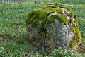 Felsblock, Waldgasthof Frau Holle, Hessen, Deutschland, IMG 1073 74 75 76 77 78 79 80 edit.jpg