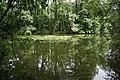 Feuchy.- Espace naturel départemental le marais (5).JPG