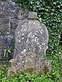 Fiddler's Stone, Castlecaldwell - geograph.org.uk - 204191.jpg