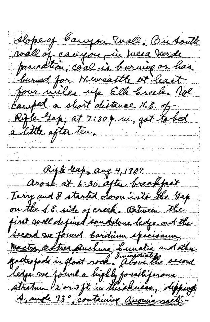 Page:Field Notes of Junius Henderson, Notebook 3 pdf/61 - Wikisource