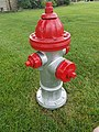 Fire hydrant 2 2.jpg