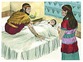 First Book of Kings Chapter 14-1 (Bible Illustrations by Sweet Media).jpg