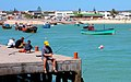 Fishing in Struisbaai Harbour - panoramio.jpg