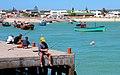 Fishing in Struisbaai Harbour - panoramio.jpg