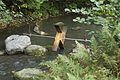 Fiskars0070.jpg