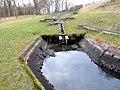 Fisketrappen ved Tangeværket 10-3-12.jpg