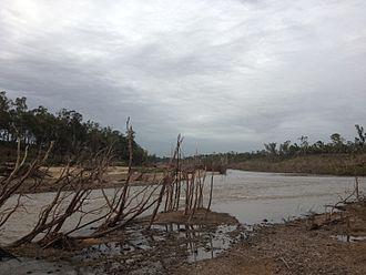 Gogango - Fitzroy River near Gogango