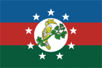 Flag of Chin State.png